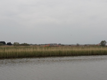 View of diggers from Oulton Marshes