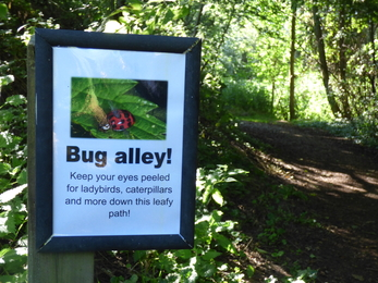 Bug alley sign Lackford