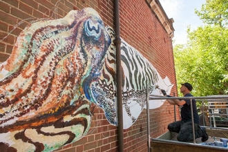 ATM cuttlefish by James Sheehy