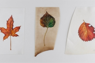 Autumn leaves on vellum by Ruth Wharrier