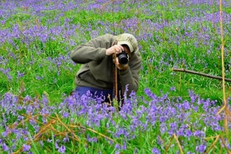 Kevin in Bluebells by Kevin Sawford close-up