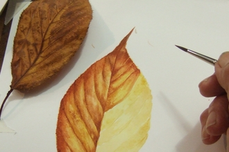 Leaf Study by Ruth Wharrier