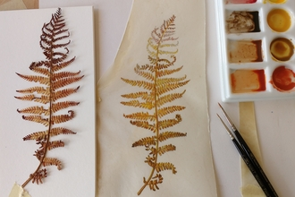 Autumn Fern Ruth Wharrier