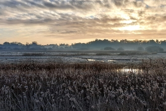 Oulton Marshes – Dan Doughty