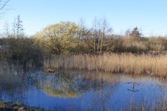 Early spring at Lackford Lakes