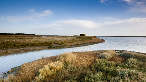 Simpson's Saltings Suffolk Wildlife Trust