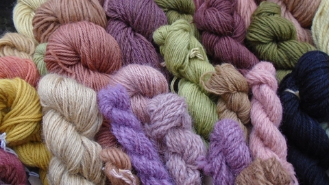 Dyed wool courtesy of Fay Jones
