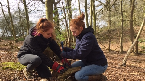 Forest School level 1