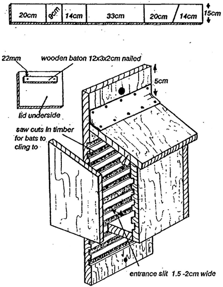 Bat box instructions
