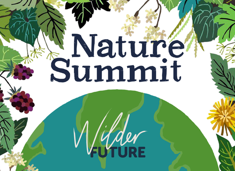 Nature Summit poster by Brie Harrison
